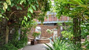 島亜熱帯植物園大温室