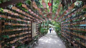 青島神社、祈りの古道
