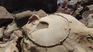 鵜戸神宮、亀石
